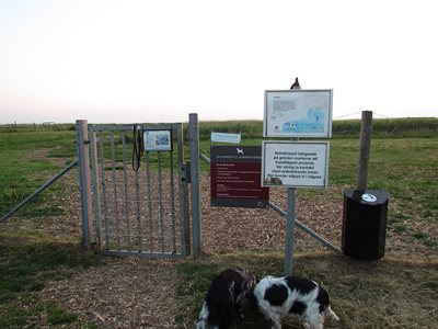 Dog park , if leash on gate, dont go in