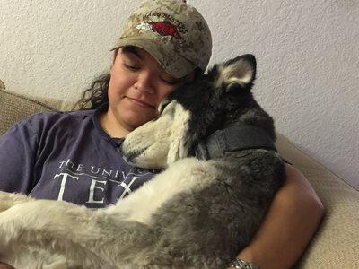 Our Husky feeling loved