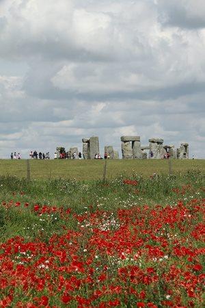 poppies with stonehenge