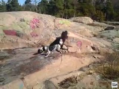 i just got an old vid of my first solo dog and my now oldest running out on...