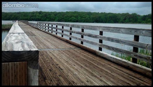 Desolate Dock